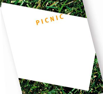 Picnic_DDC_fn