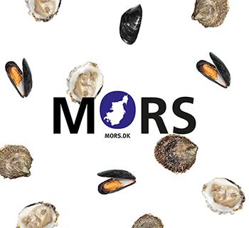 Mors_ID_2016_Work